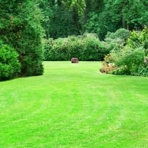 lawn care landscaping orangeburg