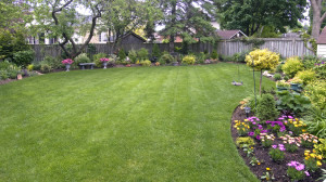 backyard landscaping orangeburg
